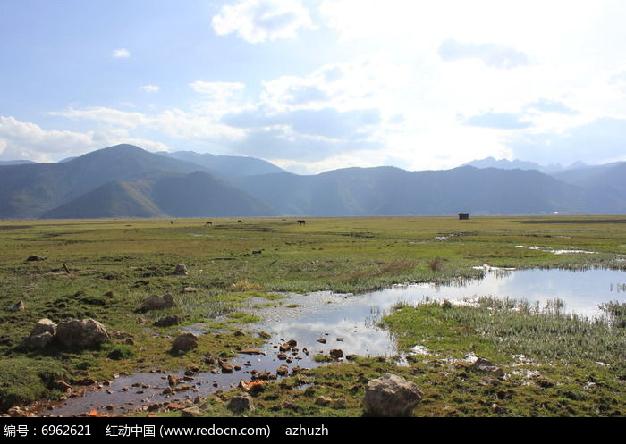 草原小溪流图片