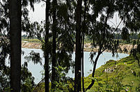树林后面的露天矿矿湖