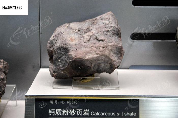 钙质粉砂页岩