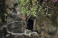 山体上黝黑的山洞洞口