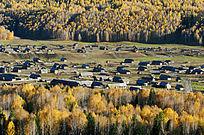 白桦林中的村庄