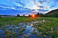 湿地沼泽落日风景