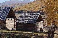 图瓦人小木屋
