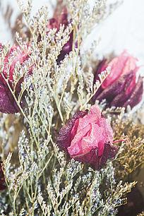 一束红色的干花