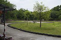 游乐场内的赛车场