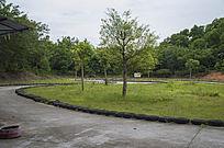 游乐场内的水泥赛车跑道