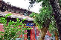 幽静的寺院建筑-建筑摄影
