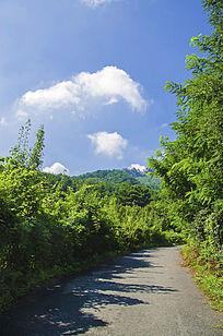 千山木鱼庵路边山林与朵朵白云