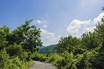千山木鱼庵路边树林与蓝天彩云