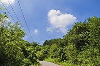 千山木鱼庵路边树林与天空白云