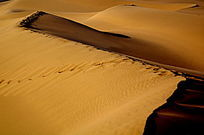 沙丘上的脚印