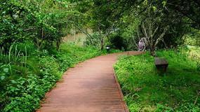 园林铺装道路