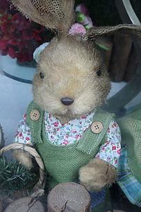 穿花布衬衫的小兔子