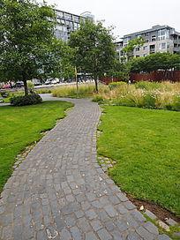 青石铺装园路