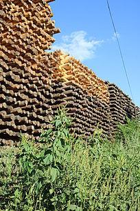 木材蓝天青草