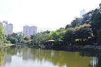 广州烈士陵园湖泊