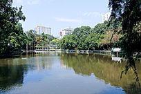 广州烈士陵园湖景