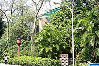广州 烈士陵园园林景观