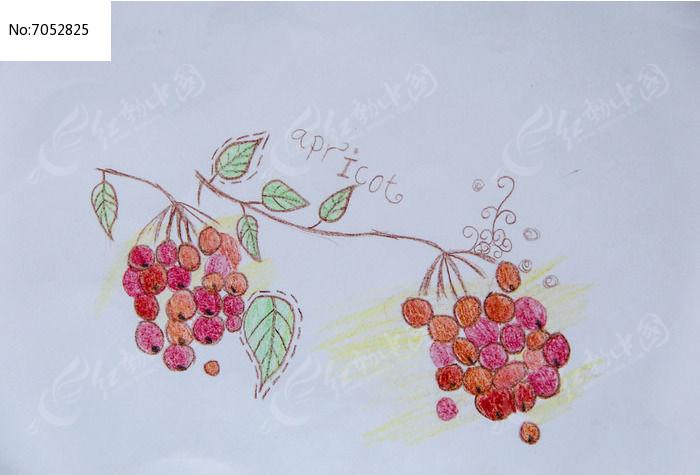 线条画樱桃图片,高清大图_插画绘画素材