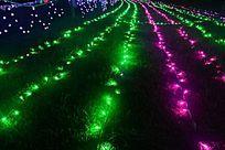 各色LED彩灯装猸的草丛