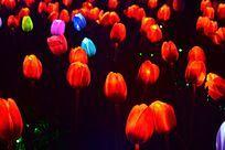 花朵形状的灯光