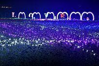 薰衣草丛上的彩灯艺术展
