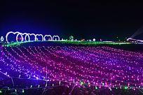 紫色彩灯装点下的迷人灯光