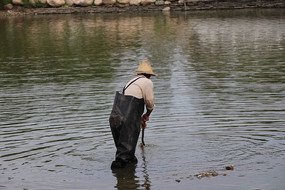 忙碌的渔夫