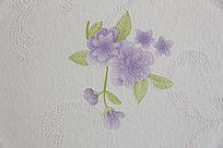 紫色小花壁纸背景