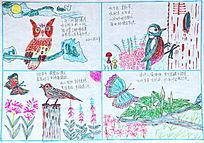老年儿童画猫头鹰和小鸟