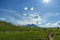 喀纳斯草原蓝天白云背景图