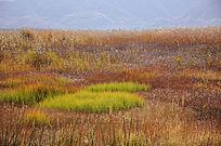 泸沽湖风景摄影