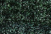 绿叶背景图案