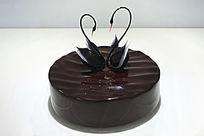 天鹅巧克力蛋糕