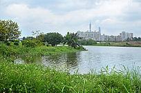城市湖泊风景图片