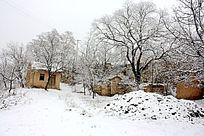 冬季远看农村小院
