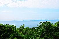 蓝天绿树海洋风光图