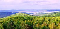 秋季的原始森林云海