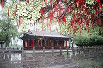 大明湖雨荷厅