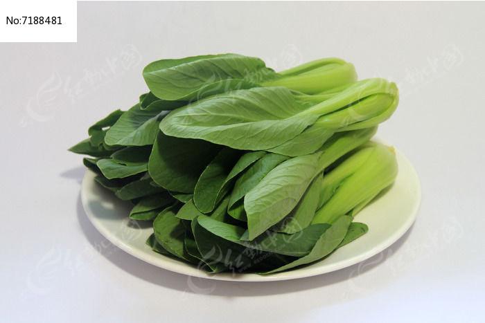 新鲜白菜图片