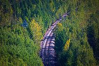森林中的铁轨