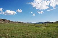 禾木草原蓝天白云下的牧场