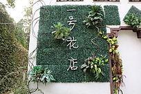 植物装饰墙面背景