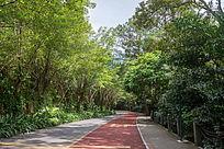 青秀山公园道路