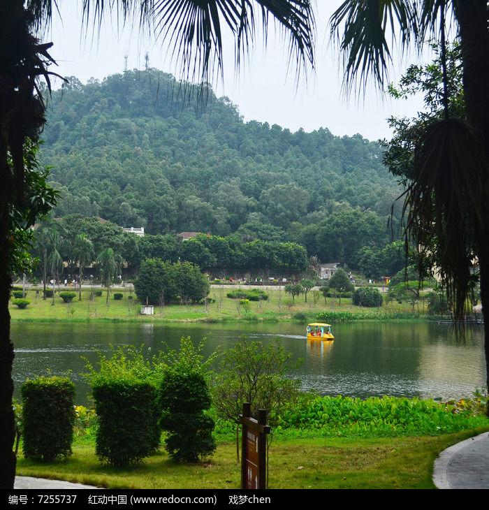 山水树木风景图片