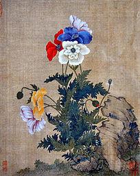花卉图 邹一桂 清代