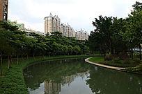 绿水青树高楼