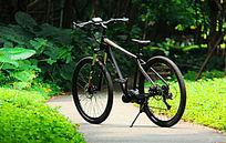自行车户外高清图
