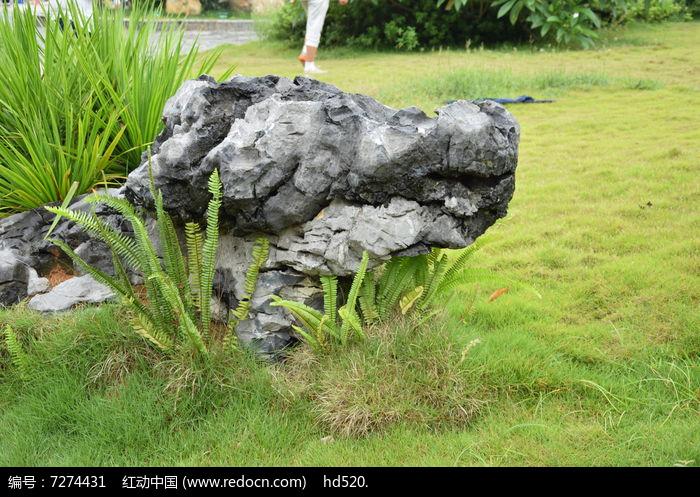 奇形怪状的石