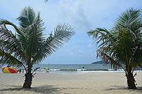 海洋沙滩椰树风光图片
